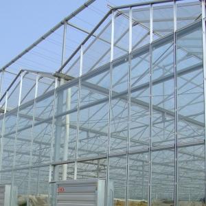 温室玻璃大棚厂家